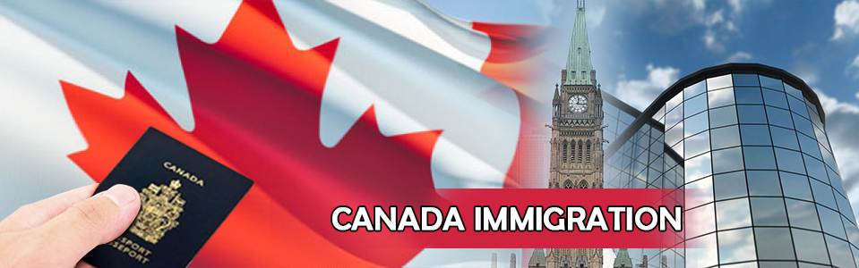 Among The Oecd Nations Canada Has One Of The Highest Immigration Rates With Numbers Of Approximately   Percent Of The Population Immigrating Each Year